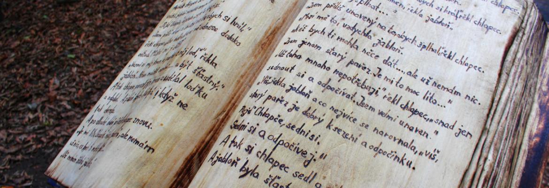 Pařez s knihou