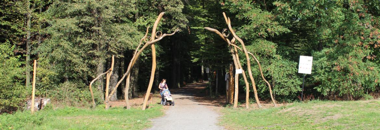 Vstup do Lesního parku Klimkovice